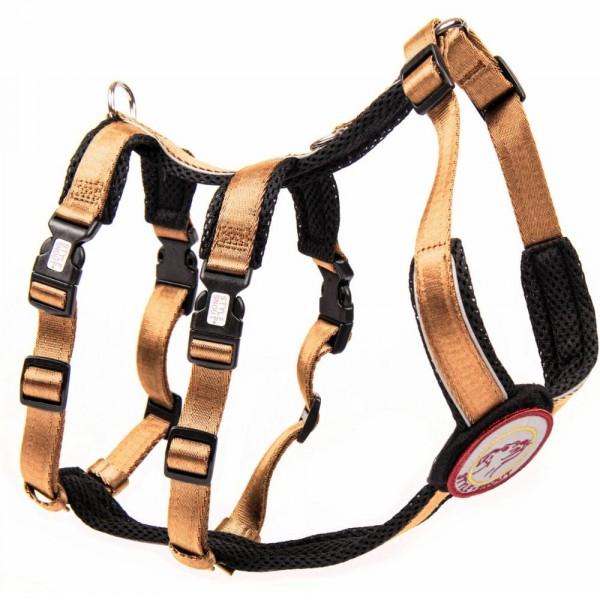 StyleSnout® Patch & Safe Sicherheitsgeschirr gold/schwarz